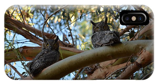 Pair Of Great Horned Owls IPhone Case