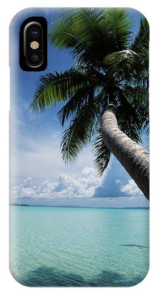 Micronesia iPhone Case - Palau, Micronesia, Palm Tree At Palau by Stuart Westmorland