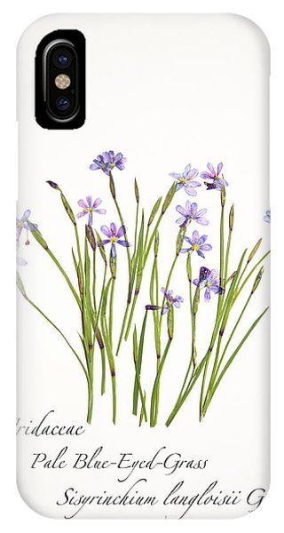 Pale Blue-eyed Grass IPhone Case
