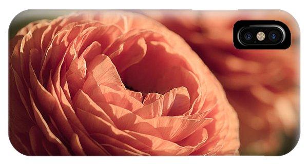 Pale Pink Petals IPhone Case