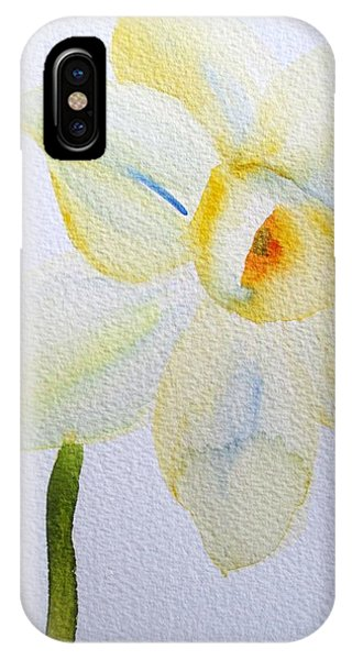 Pale Yellow Daffodil Phone Case by Sacha Grossel