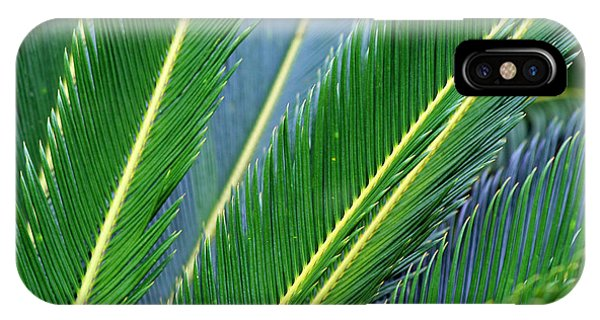 Palm Cycas Fronds IPhone Case