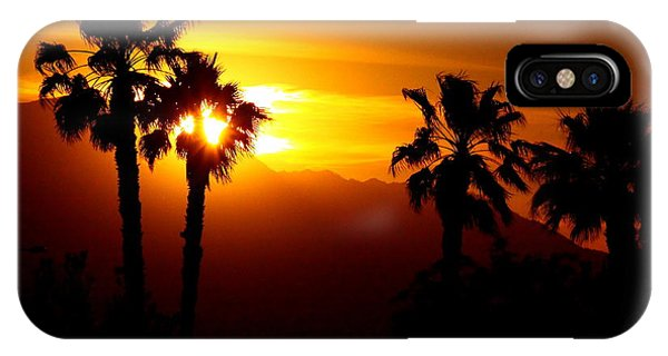Palm Desert Sunset IPhone Case