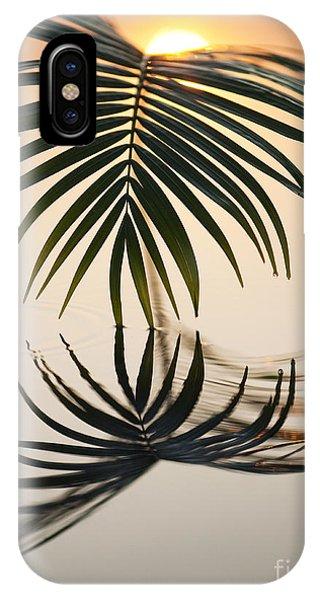 Leaf iPhone Case - Palm Light by Tim Gainey