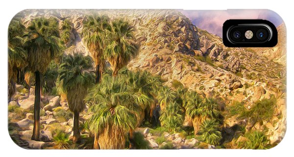 Palm Oasis In Late Afternoon IPhone Case