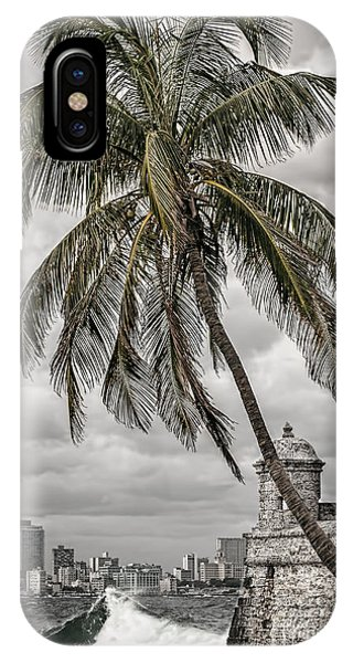 Palm Tree In Havana Bay IPhone Case