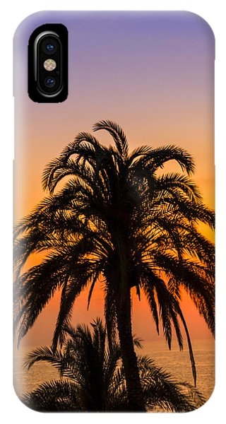 Palm Tree Sunset Vertical IPhone Case
