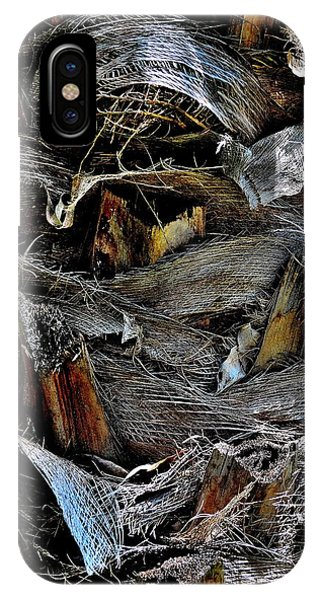 Palm Tree Trunk - Darwin - Australia IPhone Case