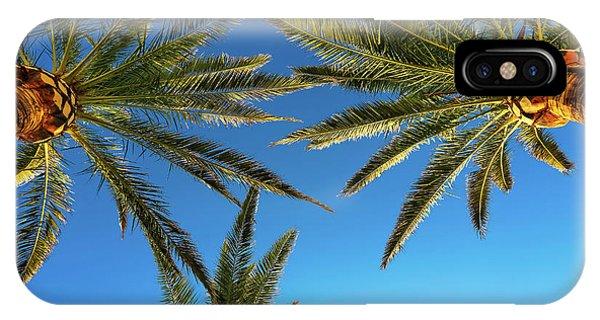 Palm Trees Against A Blue Sky Phone Case by Wladimir Bulgar