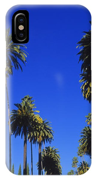 Palm Trees Along A Road, Beverly Hills IPhone Case