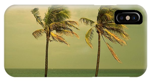Palm Trees At Hallendale Beach IPhone Case