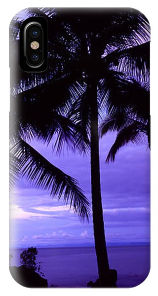 Colombia iPhone Case - Palm Trees On The Coast, Colombia by Panoramic Images