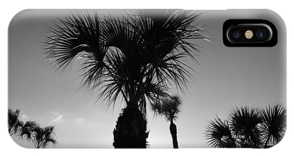 Palm Trees Reach For The Sky IPhone Case