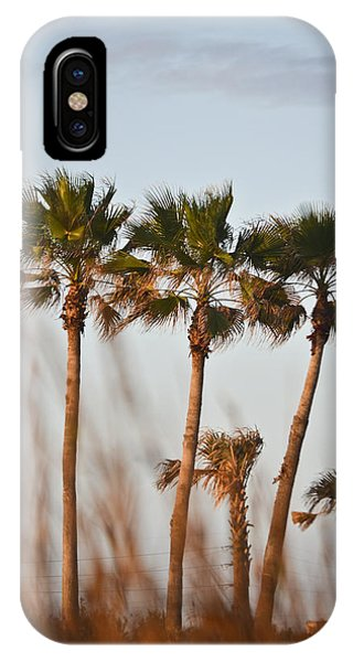 Palm Trees Through Tall Grass IPhone Case