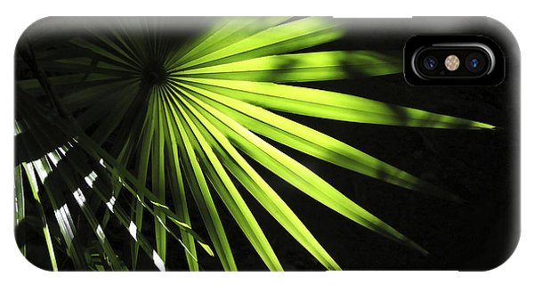 Palmetto And Rays IPhone Case