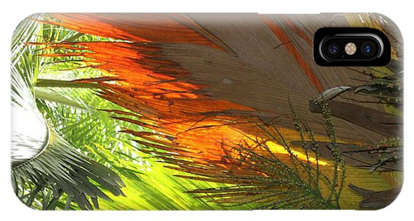 IPhone Case featuring the photograph Palms by Debbie Cundy