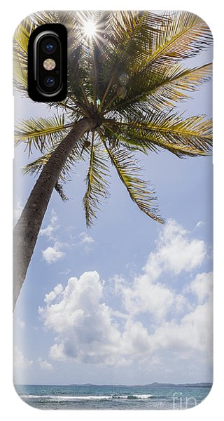 IPhone Case featuring the photograph Palms Trees Along Luquillo Beach In Puerto Rico by Bryan Mullennix