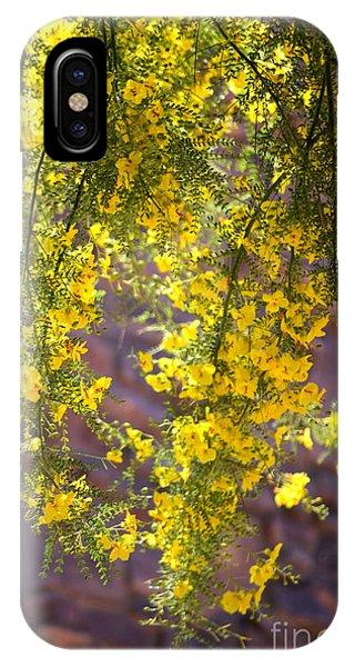 Palo Verde Blossoms IPhone Case