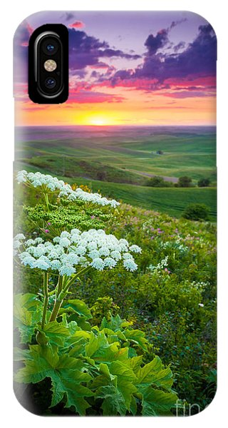 Rural America iPhone Case - Palouse Flowers by Inge Johnsson