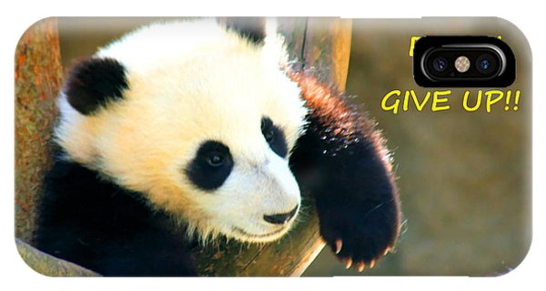 Panda Baby Bear Never Ever Ever Give Up IPhone Case