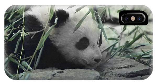 Panda Cub Bao Bao IPhone Case