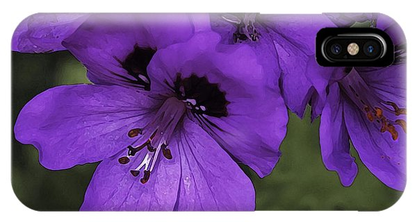 Pansies In Purple IPhone Case