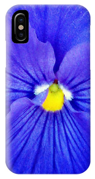 Pansy Flower 37 IPhone Case
