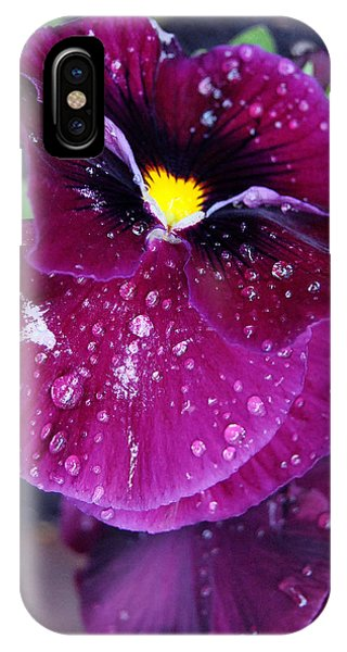 Pansy In The Dew Phone Case by Vallee Johnson