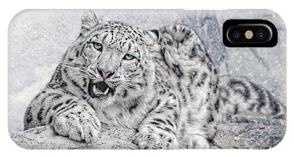 Snow Leopard iPhone Case - Panthera Uncia by Joachim G Pinkawa
