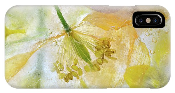 Freeze iPhone Case - Papaver Ice by Mandy Disher