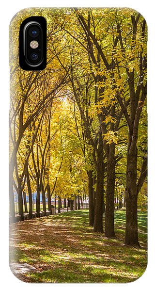 Parade Of Trees IPhone Case