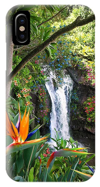 Fall Flowers iPhone Case - Paradise Falls by Doug Kreuger