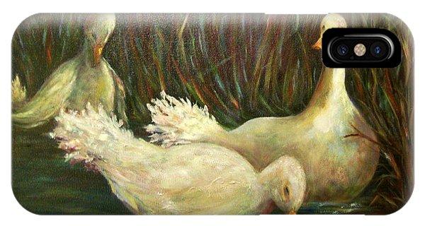 Paradise Pond,ducks  IPhone Case
