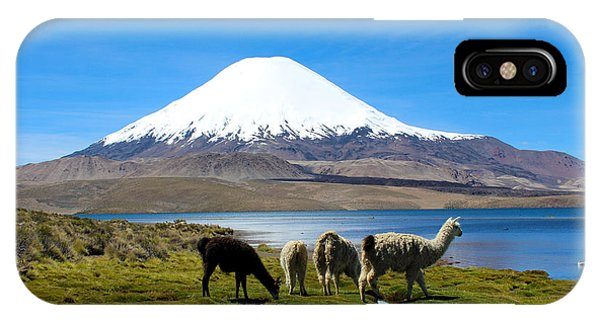 Llama iPhone Case - Parinacota Volcano Lake Chungara Chile by Kurt Van Wagner