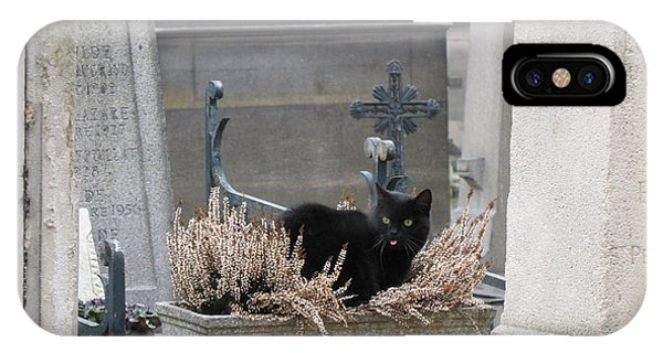 Chaise iPhone Case - Paris Cemetery Cat - Le Chats Noir - Pere Lachaise - Black Cat On Grave Cemetery Art by Kathy Fornal