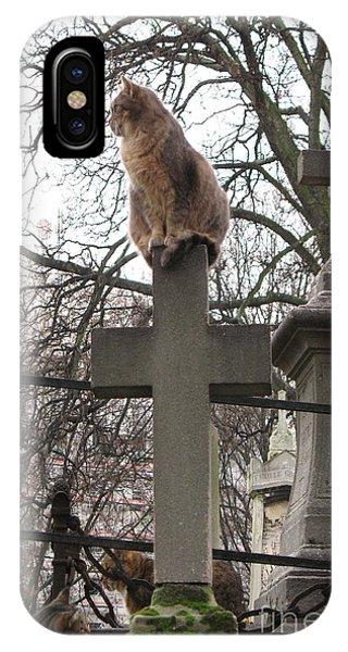 Paris Cemetery Cats - Pere La Chaise Cemetery - Wild Cats On Cross IPhone Case