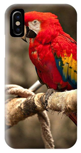 Parrot Phone Case by Kerri Garrison