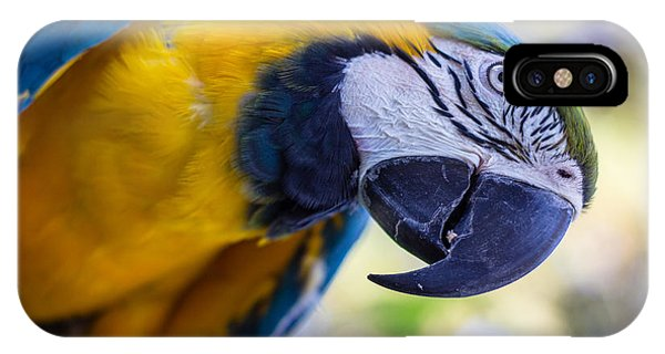 Parrot IPhone Case