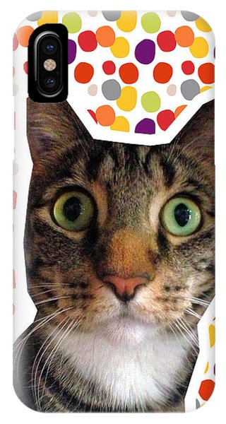 Tabby iPhone Case - Party Animal - Smaller Cat With Confetti by Linda Woods
