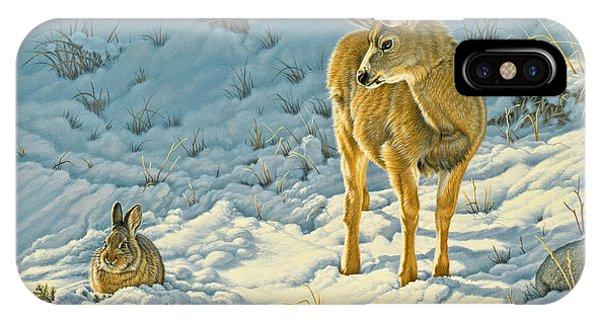 Mule Deer iPhone Case - Passing Curiosity by Paul Krapf