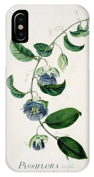 Passion Flower Phone Case by Natural History Museum, London/science Photo Library
