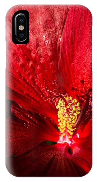 Passionate Ruby Red Silk IPhone Case