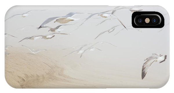 Pastel Gulls In Fog IPhone Case