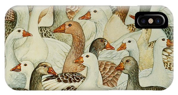 Fowl iPhone Case - Patchwork Geese by Ditz