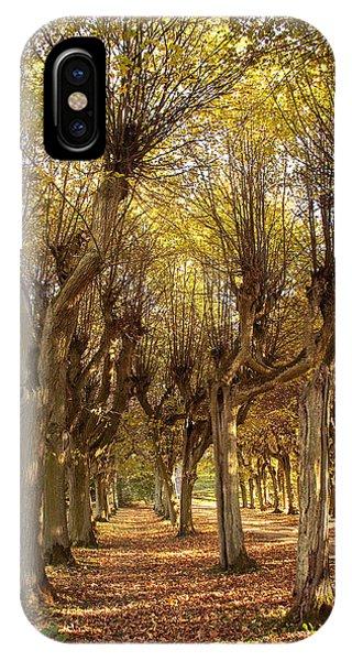 Path 2 - Garden Photography IPhone Case