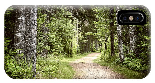 Hiking Path iPhone Case - Path In Green Forest by Elena Elisseeva