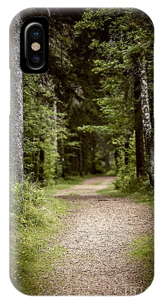 Hiking Path iPhone Case - Path In Old Forest by Elena Elisseeva