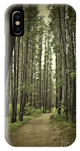Path In The Woods IPhone Case