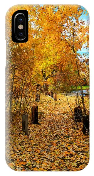 Path Of Fall Foliage IPhone Case