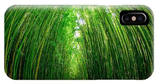 Path Through A Bamboo Forrest On Maui Hawaii Usa IPhone Case